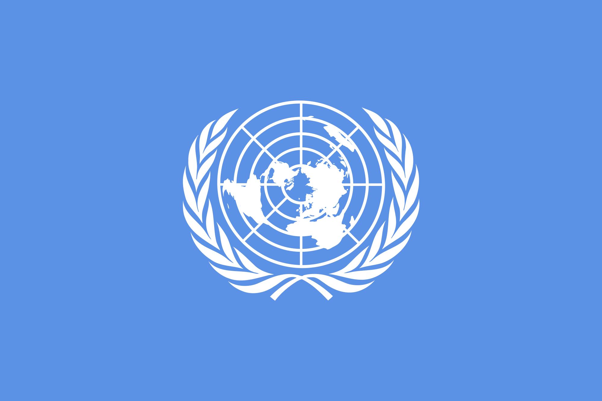 YK:n lipussa on tyylitelty maailmankartta seppeeleen sisällä.