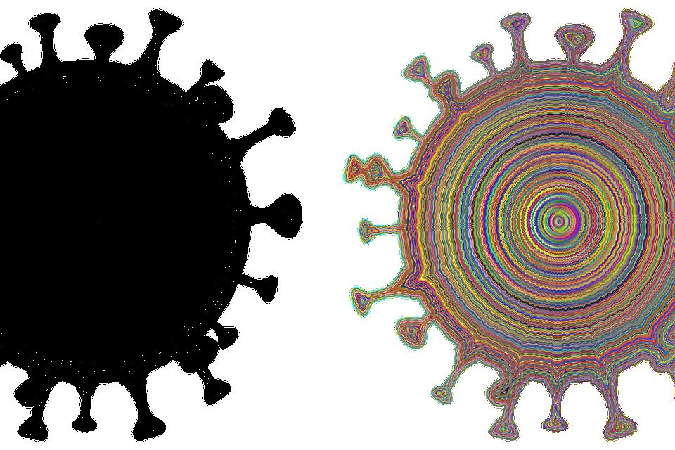 Koronavirus kuvitus. Kuva Gordon Johnson / Pixabay