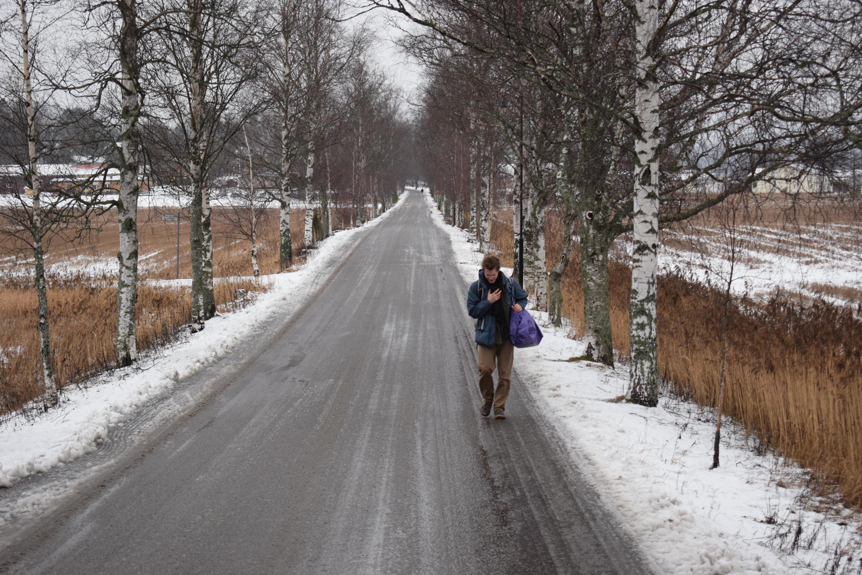 Henkilö kävelee Siviilipalveluskeskukselta johtavaa koivukujaa pitkin